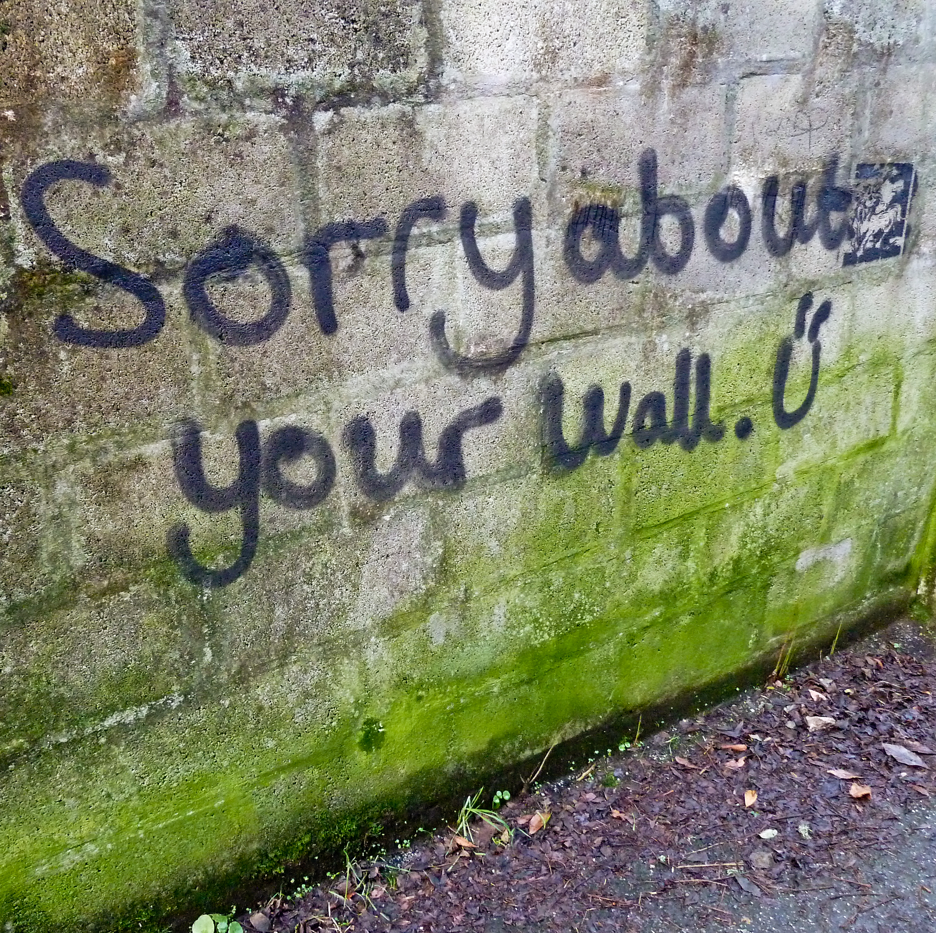 SORRY ABOUT YOUR WALL BY TIM GREEN