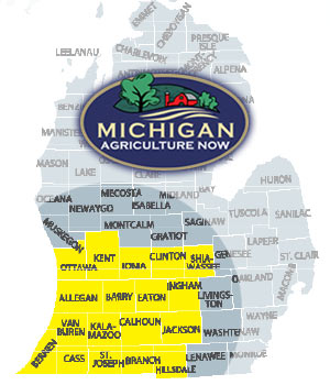 Michgian Map Graphic