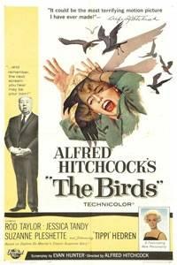 _The Birds