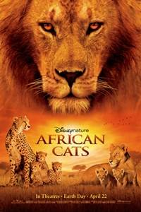 _African Cats