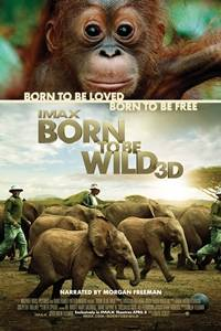 _Born To Be Wild IMAX 3D
