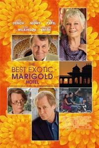 _The Best Exotic Marigold Hotel
