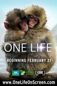 _One Life