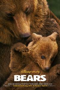 _Bears