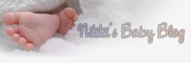 Nikki's Baby Blog Header - No Sponsor