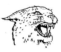 Gresham Wildcats Logo