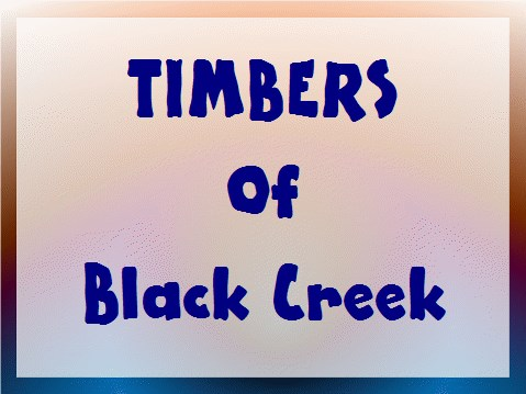 Timbers of Black Creek