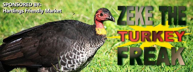 Zeke the Turkey Freak Banner